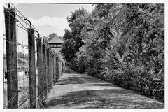 Dachau-13 (Alpa64) Tags: dachau mémorial campdeconcentration konzentrationslager
