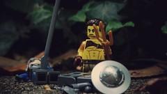 Aftermath (dwarfbricks29) Tags: lego medieval aftermath enough cautious