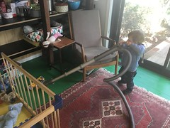 Earning his keep (kayatkinson-simson) Tags: kane 18monthsold toddler vacuuming housework cat darby catbed vintagechair turkishrug playpen