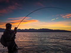 Dawn Patrol (Michael Carl) Tags: pyramid lake pyramidlake nevada flyfishing fishing bentrod angler fishermanactionshot hookedup