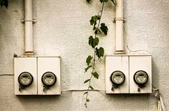 Metered Wall (otterman51) Tags: architecture canada fall grimsby grunge niagararegion ontario aged apartment colour grapevines ivy meter ortbaldaufcom photogrphy summer sunlight vine wall