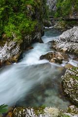 Rush    *explore (sarah_presh) Tags: slovenia vintgargorge vintgar gorge river flow le longexposure water outdoor nikond750