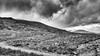 Loch Ard Forest (AdMaths) Tags: adammatheson adammathesonphotography aberfoyle lochard forest lochardforest lochlomondnationalpark trossachs mountainbiking mountainbike mtb motorola motorolamotog motog cameraphone phone forestrycommission forestrycommissionscotland scotland scottishlandscape scottish scenery scene scottishscenery landscape mono monochrome blackwhite bw blackandwhite stirlingshire stirling