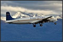 N151 Everts Air Cargo (Bob Garrard) Tags: n151 everts air cargo douglas dc6b dc6 freighter freight anc panc