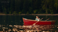 Swan Lake (Portraits by Suzy) Tags: lake red color water boat nature river travel canoe warm childhood one vehicle outdoors daylight action boatman natural light leisure oar paddle recreation rowboat sports watercraft las vegas photographer transportation system portraits by suzy mead