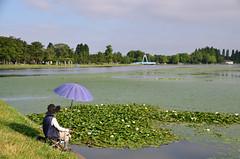 Angler (tsu55) Tags: angler pond park
