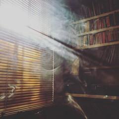 All Smoke and Windows (mrdamcgowan) Tags: smoke london londonist blinds window books records chandleresque morninglight dawn