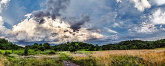 IMG_4336-43Ptzl1TBbLGER (ultravivid imaging) Tags: ultravividimaging ultra vivid imaging ultravivid colorful canon canon5dmk2 clouds farm fields stormclouds sunsetclouds scenic vista rural rainyday path evening pennsylvania pa panoramic painterly landscape summer sky