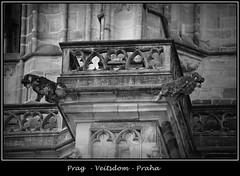 Gargoyles - 29 (fotomänni) Tags: prag prague praha gargoyles gargouille wasserspeier skulptur skulpturen veitsdom blackwhite schwarzweis noirblanc manfredweis