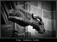 Gargoyles - 33 (fotomänni) Tags: prag prague praha gargoyles gargouille wasserspeier skulptur skulpturen veitsdom blackwhite schwarzweis noirblanc manfredweis