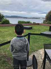 Wating to see the ferry from the other side (Stinkee Beek) Tags: australia tasmania mona ethan