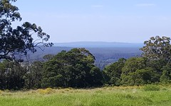 Lot 14 Graydons Pointer Road, Yatte Yattah NSW
