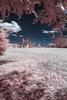 infraVaio (antoniopedroni photo) Tags: fidenza infrarosso infrard ir720 nikond70s vaio parma parmense italy acqua amelia