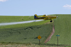 Crop Dusting in the Palouse 2 (cheryl strahl) Tags: washington palouse thepalouse farms crops cropduster spraying wheat barley chickpeas lentils