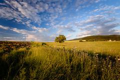 Sunset, Rudartsi Bulgeria (Wieland Hornung) Tags: griechenlandurlaub2017 rudartsi bulgarien bulgeria nikond7200 nikon nikonlove d7200 dx landschaft kloster sigma1020 sigmanikon