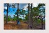 hide and seek... (Leitratista) Tags: nagaparan naturemood naturelover naturehippys naturesart lovenature nature mountain moment highlands landscape explore throughherlens composition nikond3400 nikondslr nikoncapture abra adventure angles visualart art color