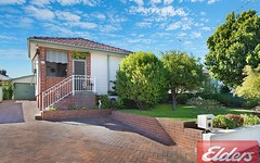 17 Apple Street, Constitution Hill NSW