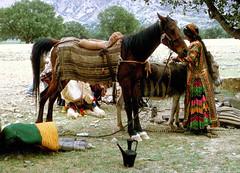 Qashqai nomad woman. Iran (Alain Rempfer) Tags: streetphotography candidphotography candidportrait candidsnapshot emotion face visage publicspace espacepublic scenedevie urban portraiture viequotidienne dailylife photographienonposée unposedphotography nomad qashqai iran femme woman cheval horse tribu tribe argentique filmcamera pentaxspotmatic shiraz ngc