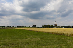 Somewhere in The Netherlands (Trond Sollihaug) Tags: holland netherlands windmill field farming agriculture crops grass