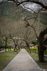 Tianxiang rest area (天祥), Taroko Gorge (Hualien, Taiwan) (balukootravel) Tags: 2016 selfdrive taiwan tarokogorge hualien tarokonationalpark marble canyon trail hike balukootravelblog balukootravel travelblog travelblogger iamtb travelguide traveltips travelitinerary itinerarysuggestions