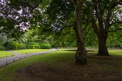 Ireland - Dublin - St Stephen's Green (Marcial Bernabeu) Tags: marcial bernabeu bernabéu irlanda ireland dublín dublin st stephen green park parque trees arboles verde cesped hierba grass