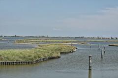 delta5 (33) (gca_66) Tags: delta po fiume