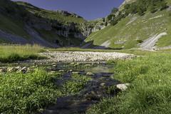 Gordale Beck (ScrewJ) Tags: gordale gordalescar gordalebeck river beck stream water rocks sunny summer cliffs limestone scree yorkshiredales england malham flowingmalhamenglandunitedkingdomgb