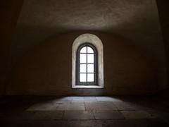 Riddarholmskyrkan (Feldore) Tags: riddarholmskyrkan stockholm church chapel sepia old architecture feldore mchugh em1 olympus 1240mm sweden swedish window