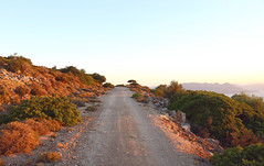 Aegina Off-roading (Ash Dowie) Tags: nature mountains hills views scenery naturallight sunset sun summer plants sky ocean sea golden canon 6d dslr slr 2470 2470mm 2470l l is usm eos road colours