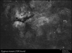 Cygnus constellation mosaic 134 hours! (Andre vd Hoeven) Tags: cygnus mosaic constellation deepsky astrophotography crescent nebula ngc6888 ic1318