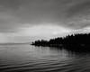Lake Yellowstone (austin granger) Tags: lakeyellowstone yellowstonenationalpark thunderstorm reflections trees ripples foreboding ominous film gf670