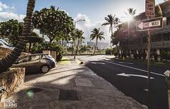 Waikiki (Patrick.Burns) Tags: waikiki hawaii oahu island honolulu