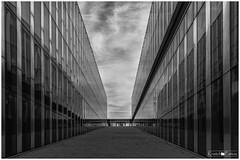Dunkerque - Halles aux sucres (Kristof Pattou) Tags: halles aux sucres dunkerque bw architecture monochrome cloudy black cpl d7200