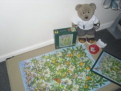 Miffed (pefkosmad) Tags: jigsaw puzzle hobby leisure pastime 1000pieces secondhand used incomplete missingpieces passionflowers trellis rachelarbuckle painting purrfectpuzzles art tedricstudmuffin teddy ted bear cute cuddly soft stuffed animal toy plush fluffy celticcollection
