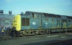 "Deltic 55017 ""THE DURHAM LIGHT INFANTRY"", silenced forever at Doncaster works, 27th February 1982 (colin9007) Tags: english electric napier deltic type 5 br class 55 doncaster brel 55017 d9017 durham light infantry"