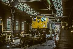 The games a bogie (jbg06003) Tags: class26 brblue haymarket depot brcw