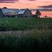 the beet farm