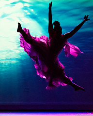 SBS-LB-50 (sinakone) Tags: richmond ballet dance byrd park dogwood dell latin
