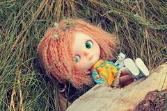 IMG_7317 (helenaaahaha) Tags: blythe blythedoll blytheinrussia bigeyes blythedollcustom customblythe custom customizedbyhelenaaa cutethings gingerhair fbl freckles weekend sweety summer