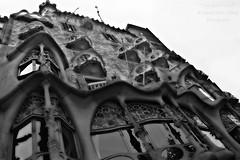 """Casa Batllò Gaudì"" (giannipaoloziliani) Tags: soft curved flickr visual europe nikond3200 nikoncamera nikonphotography prospettica perspective art architecture city round tondo smooth barcelona barcellona spain spagna espagna monochrome monocromatico biancoenero blackandwhite gaudì"