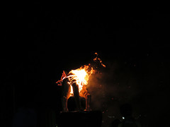 Ogoh Ogoh Burns (Jellibat) Tags: tasmania darkpark darkmofo australia winter festival art ogohogoh tasmaniantiger fears burn fire fear