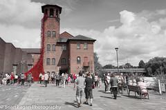 IMG_5474.jpg (brianfagan) Tags: 2017 6d brianfagan brianfaganphotography canon derby derbyshire eos flood july mill nottingham poppies poppy red silkmill tour uk