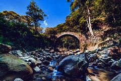 DF4_5031 (歐!) Tags: 拱橋 老橋 台灣 tainan archbridge zeiss 15mm distagon zf2