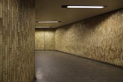 Subway Nippes Lohsestraße (LichtEinfall) Tags: img9547lohse raperre köln frühmorgens kölnfrühmorgens ubahn subway köln0329