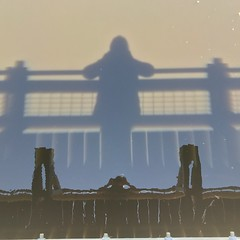 Shadows and Reflections.  Selfie on a Bridge. (beckygiovine) Tags: selfie shadow waterreflection tacoma snakelake