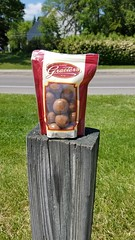 The Ohio State University (dankeck) Tags: graeters chocolate melting candy post discarded bag full ruined heat summer columbus franklin franklincounty central ohio