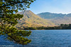 Across Pollacapall Lough (PRPhoto dot Wales) Tags: ireland prphotowales lake landscape water connemara galway mountains bluesky photograph canon travel pinetree pine trees nothdr nofilters nature beauty tranquility