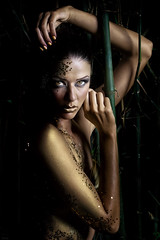 gold and bamboos (polo.d) Tags: make up body paint painting portrait night beauty face strobe light dark