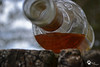 From below (AngelsDiarysPhotography) Tags: captainmorgan captain morgan alcohol bottle open treebench tree bench water angel angelsdiary photo photographer photography nikon nikond31 nikond3100