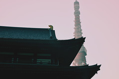 (Virginia G.) Tags: tokyotower zojojitemple shibapark shibakoen 芝公園 japan architecture 増上寺 tokyo